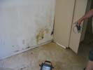WATERPROOFING  issues in Walls