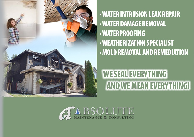 Absolute Maintenance & Consulting Banner